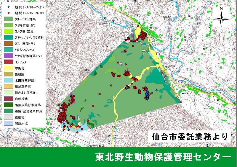 GISによる行動圏解析(仙台市委託業務)